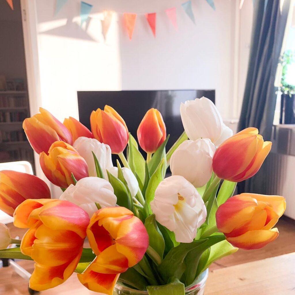 Köpte tulpaner i Amsterdam och säger att de var till Johan när det egentligen är till mig själv.